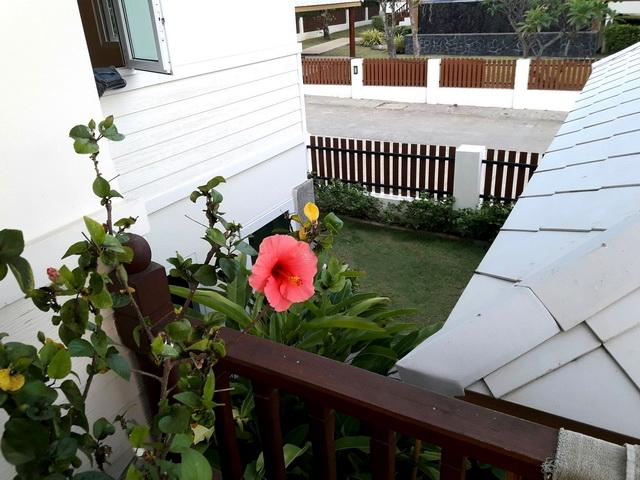 บ้าน-สำหรับ-ขาย-พัทยาฝั่งตะวันออก-east-pattaya 20180306074812.jpg