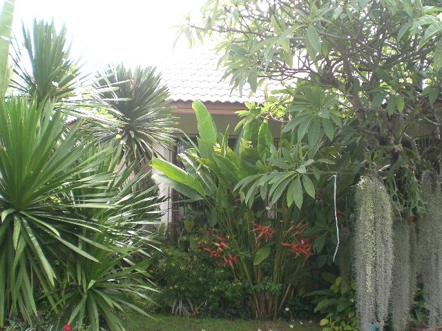 บ้าน-สำหรับ-ขาย-ซอยเขาตาโล--soi-khao-talo 20130606091536.jpg