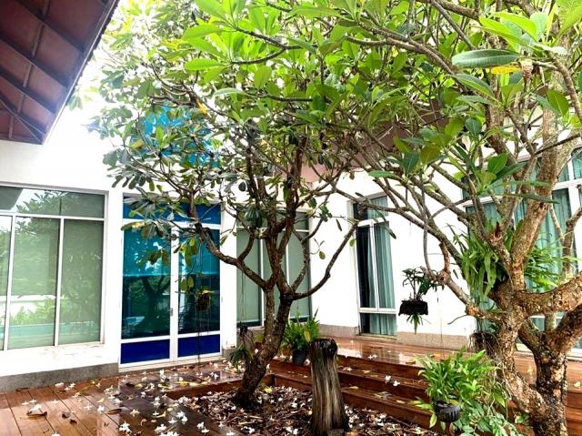 บ้าน-สำหรับ-ขาย-พัทยาฝั่งตะวันออกl-east-side-pattaya 20200814185336.jpg