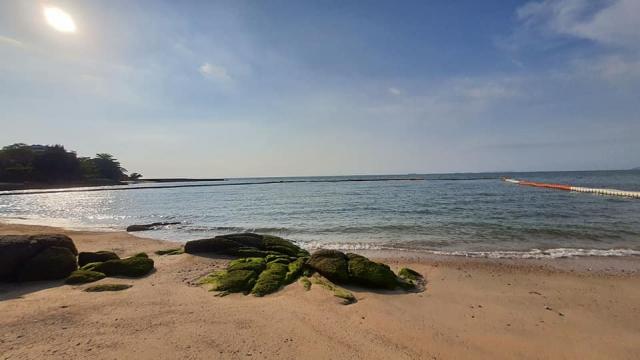 บ้าน-สำหรับ-ขาย-พัทยาฝั่งทะเล-beach-side 20210310202117.jpg